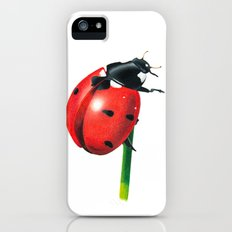 Ladybug | Colored pencil drawing iPhone (5, 5s) Slim Case