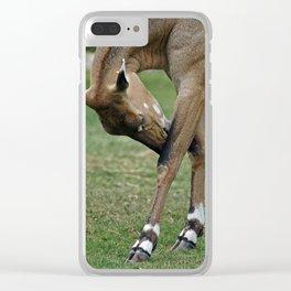 Persian Gazelle Clear iPhone Case