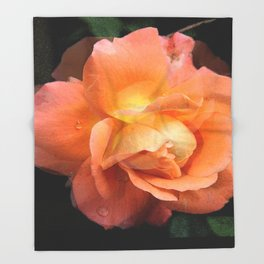 Rose With Dew Abstract Throw Blanket
