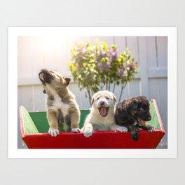 A Puppy's Song Art Print