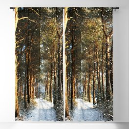 Forest Snow Scene Blackout Curtain