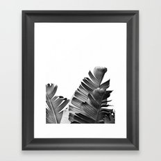 TROPICAL VOYAGE II Framed Art Print