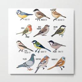 Birdwatching Birder Gift Wildlife Birds Metal Print