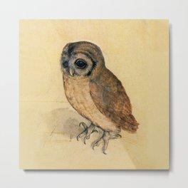 Albrecht Durer The Little Owl Metal Print