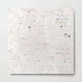 Birchbark texture Metal Print