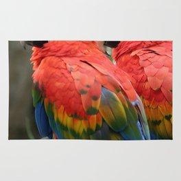 Scarlet Macaw Rug