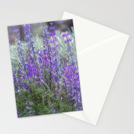 Color in the High Desert Stationery Cards