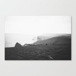 Jurassic Coast 2 Canvas Print