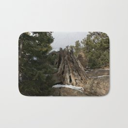 Colorado Playground Bath Mat