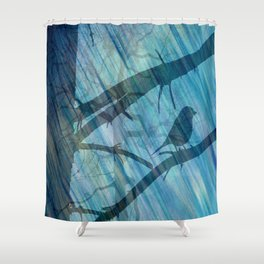 Singing lesson Shower Curtain