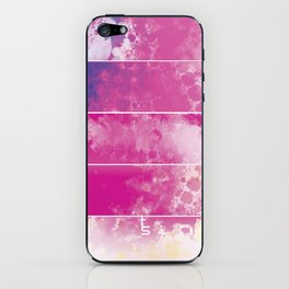 Color Texture (Five Panels Series) iPhone Skin