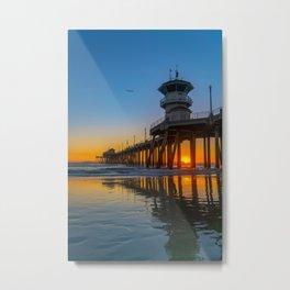 Soaring Seagull at Sunset Metal Print