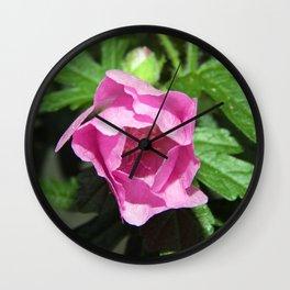 Musk Mallow - Pretty Pink Flower Wall Clock