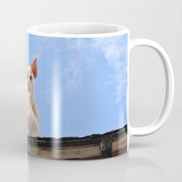 Chihuahua Coffee Mug