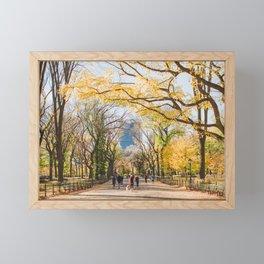 Golden in Central Park Framed Mini Art Print