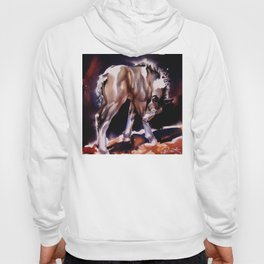 Foal Scratches  Hoody