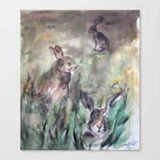 Hare Sketch #1 Canvas Print