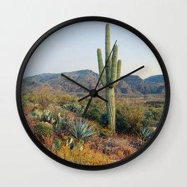 Spring in the Desert Wall Clock