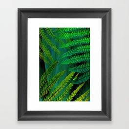 Forest Fern Green Framed Art Print