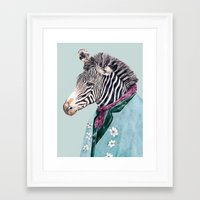 zebra Framed Art Prints featuring Zebra by Animal Crew