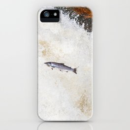 silver salmon  iPhone Case