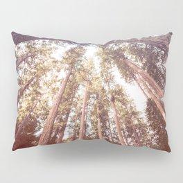 Forest Sky Pillow Sham