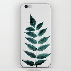 Leaves 3A iPhone & iPod Skin