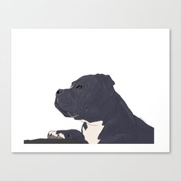 Jupiter the dog Canvas Print