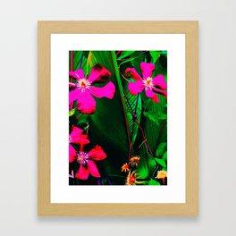 Florida Garden in Bloom Framed Art Print