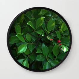 Green tropical foliage Wall Clock