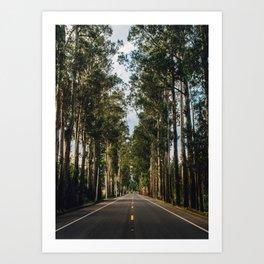 A Good Road (Ecuador) Art Print