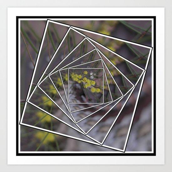 Wattle Mandala Art Print