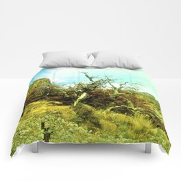 Dries the nature. Comforters