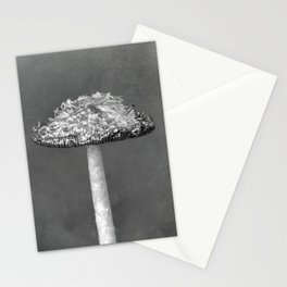 Autumn Mushroom (c)Joel Stephen Birnie, 2017 Stationery Cards