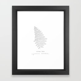 New Zealand Silver Fern. Framed Art Print