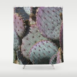 Cactus Whiskers Shower Curtain