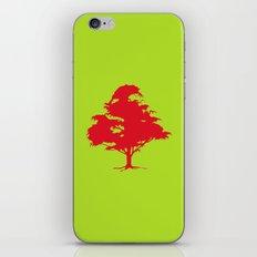 A friend iPhone & iPod Skin