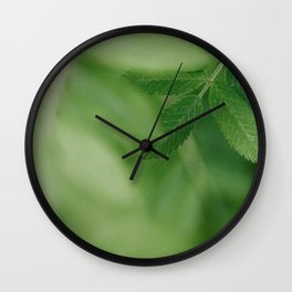 Spring life - Beautiful green rowan leaves in macro image Wall Clock