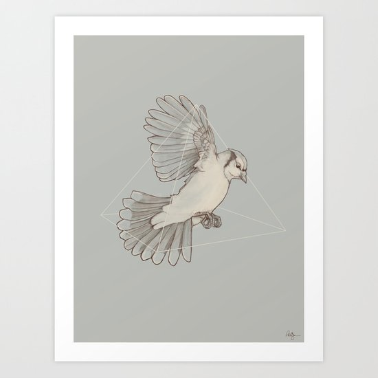 Dynamics of Flight Art Print