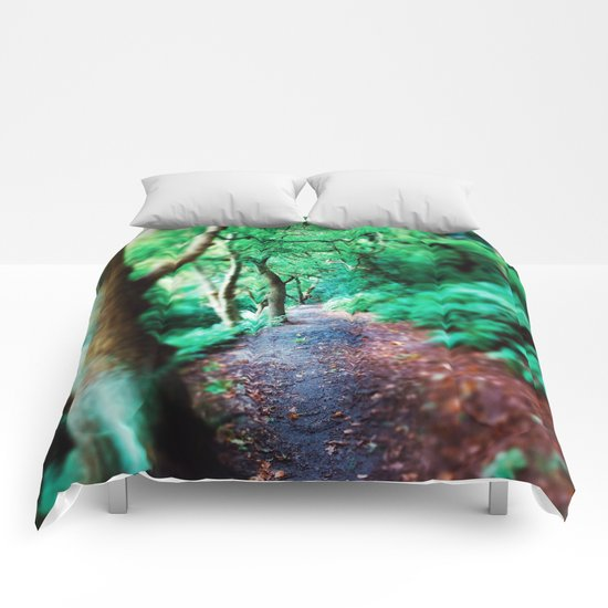 First Day of Fall Comforters