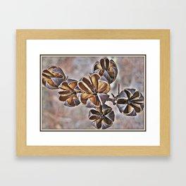 Crepe Myrtle Buds Framed Art Print