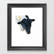 Swedish farm dog Framed Art Print