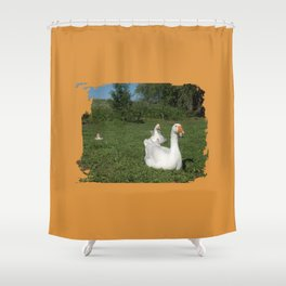 meadow two white geese with their young on the green Shower Curtain
