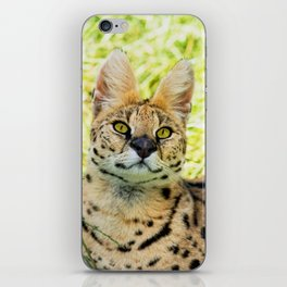 SERVAL BEAUTY iPhone Skin