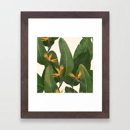 tropical floral Framed Art Print