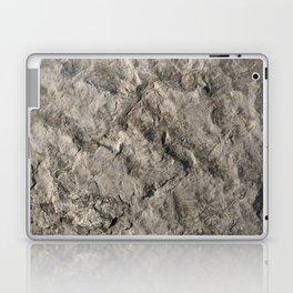 Rock Face Design Laptop & iPad Skin