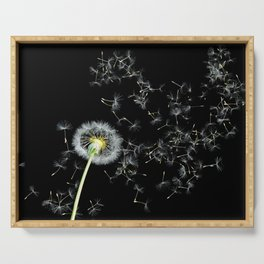 Blowing in the Wind Dandelion, Scanography Serving Tray