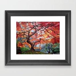 Portland Japanese Maple Tree Framed Art Print