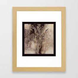 Vos Framed Art Print