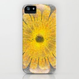 Morenosite Makeup Flowers  ID:16165-102401-08620 iPhone Case